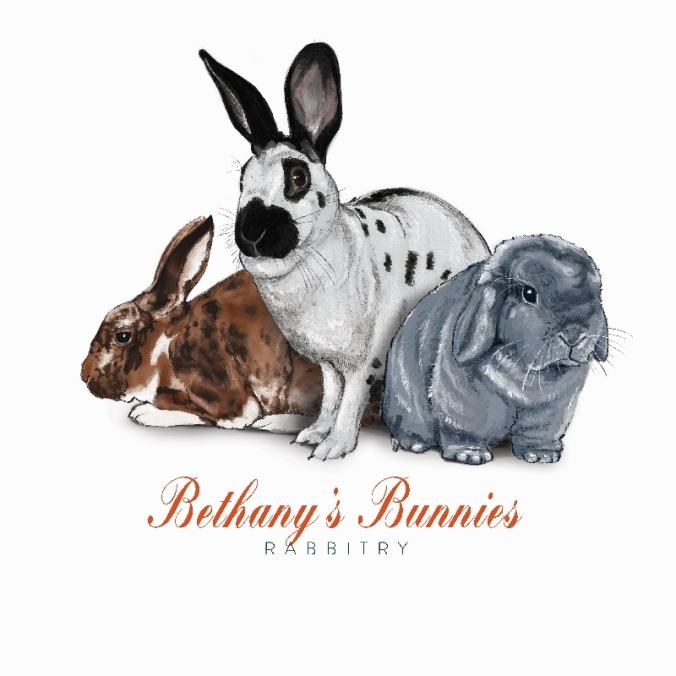 Bethany Chatham_Bunnies (800x800)